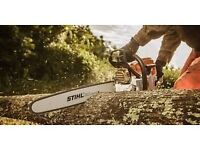 TREE SURGEON - TREES CUT - TRIMMED - GARDENS CLEARED - HEDGES - CLEARANCES - 7 DAY SERVICE !! -