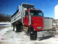 FOR SALE 99 WESTERN STAR TANDEM