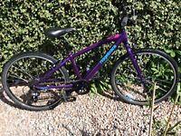 Ridgeback 24 Dimension Bicycle