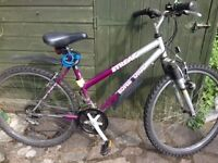 Ladies Bike with gears, lights, lock AND NEW TYRES!