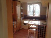 Bright, airy 2 bedrooms, separate kitchen & sitting room, power shower, shared garden. K&C parking
