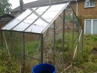 large green house 8ft x 6ft