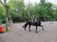 Confident Horse Rider Lothians