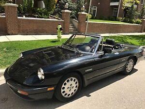 Gorgeous & Sexy 1989 Alfa Romeo Spider
