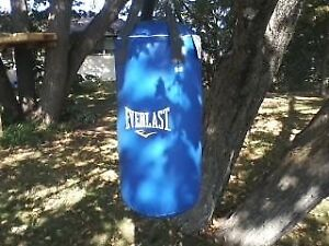 Everlast bag T25 and gloves