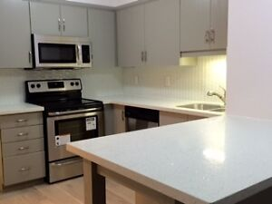 Beautiful, totaly renovated  top floor apartment for rent Kitchener / Waterloo Kitchener Area image 1