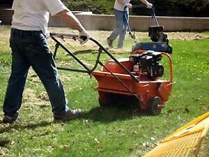 Looking to buy a power rake and aerator