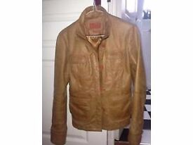 Italian Leather Jacket Sized 10 - Immaculate Condition