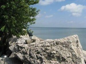 FOR LEASE- 114 EAST BEACH, LEAMINGTON ONTARIO Windsor Region Ontario image 3