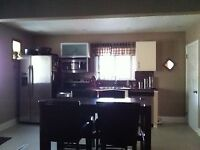 1 room to rent in 3 bedroom house