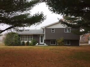 Country Living in the City and Close to ALL Amenities
