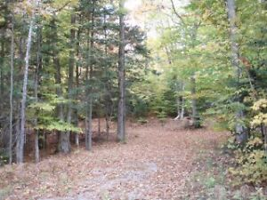 20 Acres - Close to town and beach