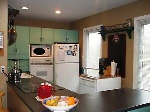 4 bedroom close to campus and downtown! All utilities included!