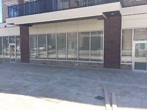 Brand New Commercial/Retail Units On Mississauga Rd For Dentist
