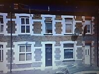 4 SHARE MID TERRACE PROPERTY FOR RENT IN HEART OF CATHAYS