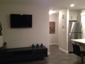 You and the Kids can enjoy a Developped basement  in Blackstone Strathcona County Edmonton Area image 6