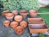 Miscellaneous terracotta plant pots