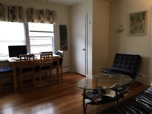 Furnished one bedroom apartments available for single occupancy