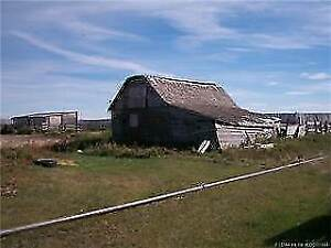 Work For Reduced Rent On A Farm In Vulcan