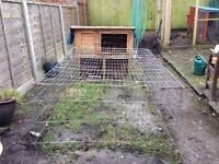 FREE Rabbit/guinea pig hutch and run