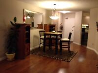 Beautiful 2 Bedroom +1.5 baths Downtown. Come check it out!