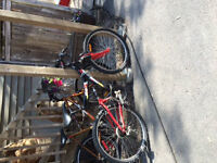 Supercycle Bike_Best Offer