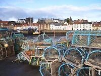 FISHERMANs HOLIDAY COTTAGE (THE FIFIE), ACCOMMODATION, APARTMENT IN ST MONANS, FIFE, NEAR ST ANDREWS