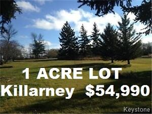 One acre lot in Killarney, Mountain Ave - $54,990
