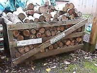 Seasoned logs (ideal for log burners)