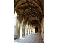 CAMBRIDGE educated Private Tutor, N. London: English Lit. & Language, Art History, Oxbridge, 11+ Etc