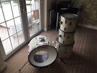 Premier Royale Drums