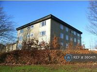 2 bedroom flat in Abbotsford Drive, Grangemouth , FK3 (2 bed)