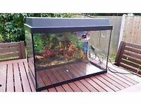 Aquarium 60 x 30 x 40