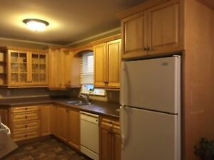SOLID OAK CUSTOM KITCHEN CABINETS FOR SALE