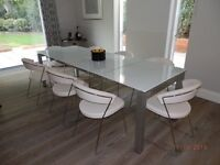 Calligaris table and 10 dining chairs
