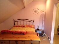 Double room to let in spacious family home. Would suit single professional or PhD student.