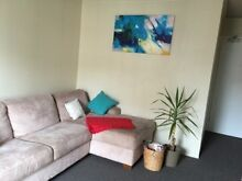 1 bedroom apartment for rent- Excellent Location! Centennial Park Eastern Suburbs Preview