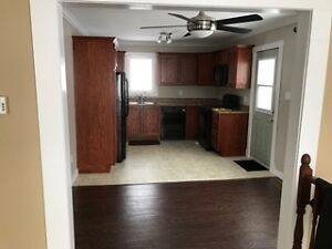 Cozy 3 bedroom house for rent