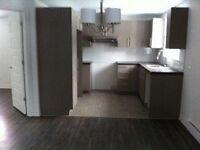Grand condo 1 chambre entièrement rénové. À VOIRE!