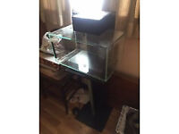 Fish Tank with accessories!!!