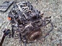 Genuine 1.6tdi CAY series engine parts dismantling seat,audi,skoda,toledo,golf mk6,ibizia,leon,exeo