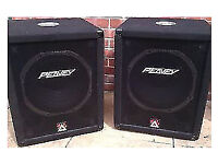 Peavey 500 xt bass bin speakers