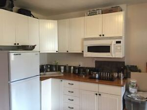 Semi-furnished basement suite available September 1st!