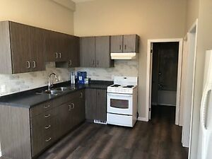 BEAUTIFUL NEWLY RENOVATED 2 BDRM HOUSE FOR RENT IN HAMILTON