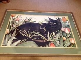 Cat amongst tulips : large framed colour print