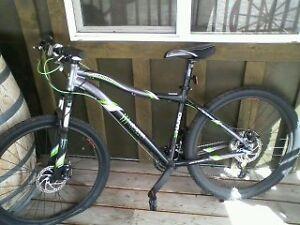 Energy Drinks in Mountain Bike