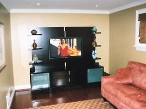 WALL UNIT FROM ART SHOPPE (CAN USE BOTTOM ONLY)