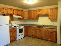 3 Bedroom Apartment in Wolfville June 1st