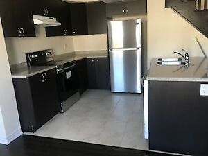 Brand New 3 Bedroom Town House For Rent