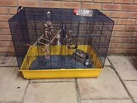 Cage for Rats or other rodents